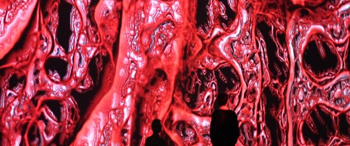a plasma pattern