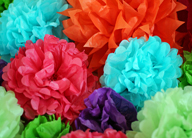 ¡Viva Frida! Flores de Colores