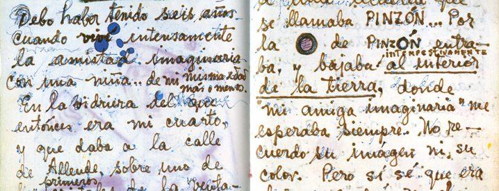 Detail of Frida Kahlo's journal
