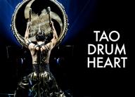 Tao Drum Heart show logo