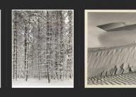 triptych: Weston-Adams-Weston black and white photos