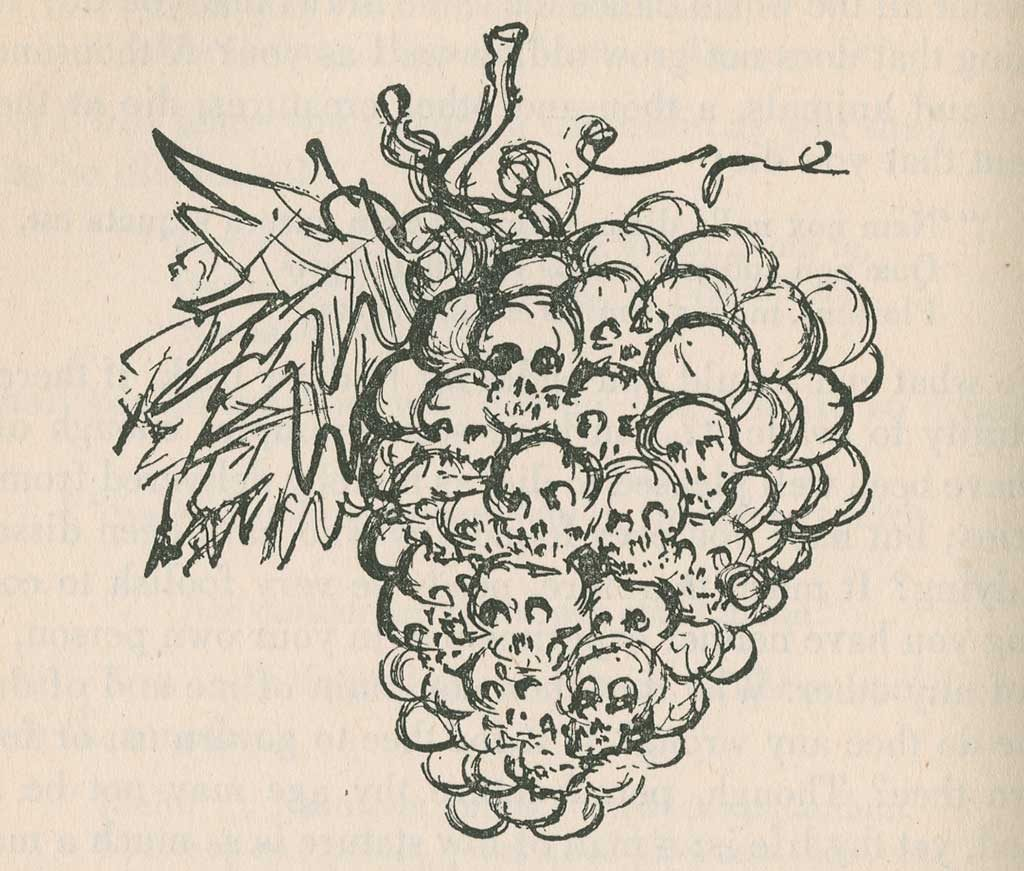 Skulls as grape cluster drawing