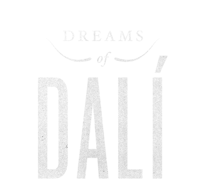 Dreams of Dali Virtual Reality Experience
