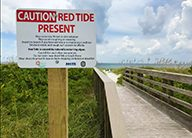 SciCafe: The Hunt for Red Tide October