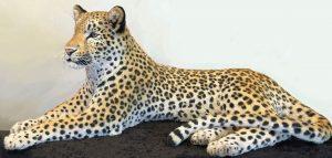 Dali Dozen's Anne Andersson's work entitled Leopard