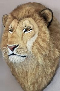 Dali Dozen's Anne Andersson's work Lion head