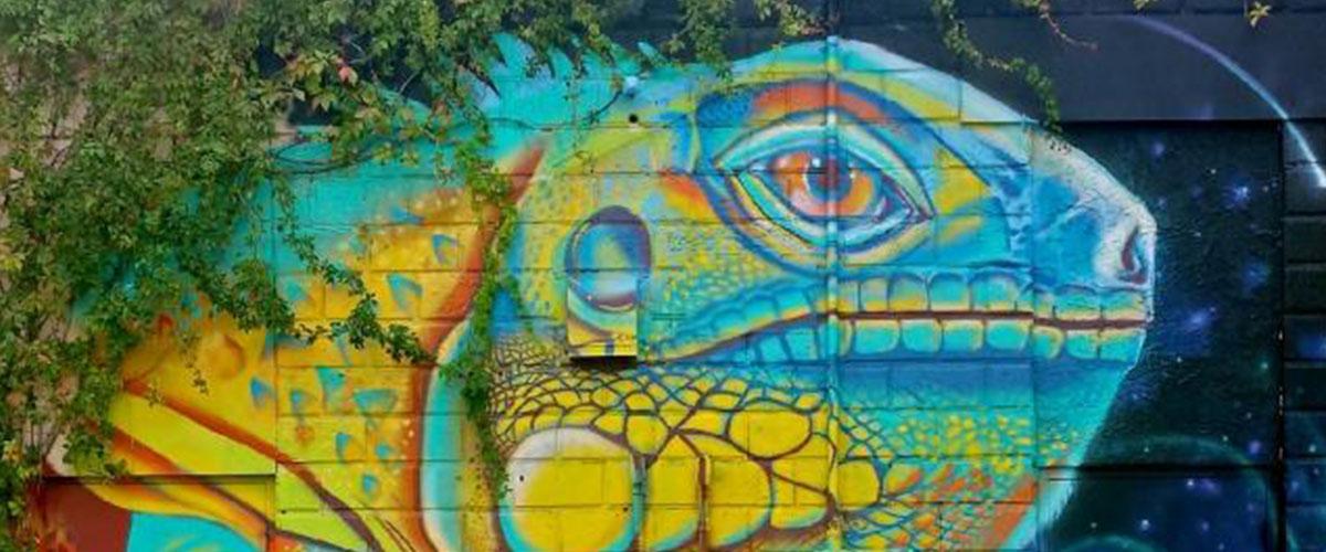 St. Petersburg iguana mural